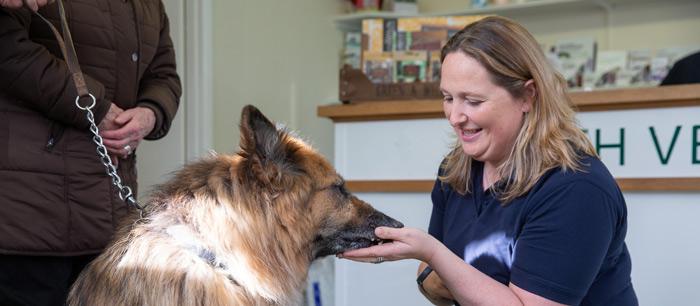 heath-vets-vet-in-burgess-hill-vet-services-veterinary-facilities-carousel-4